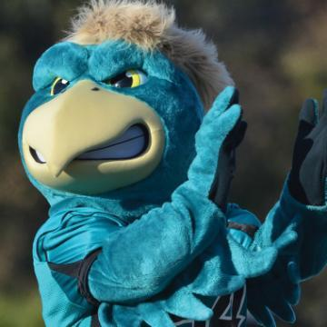 Coastal Carolina University's Mascot, Chauncey