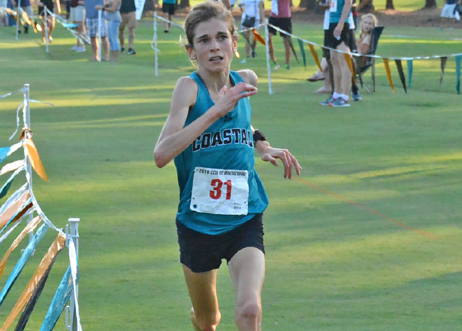 Teal and Bronze - Chanticleers on the Rise - Annie Bothma
