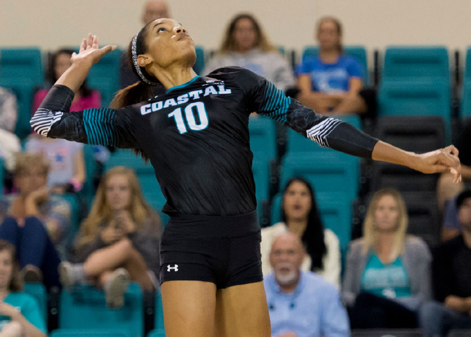 Teal and Bronze - Chanticleers on the Rise - Volleyball Player