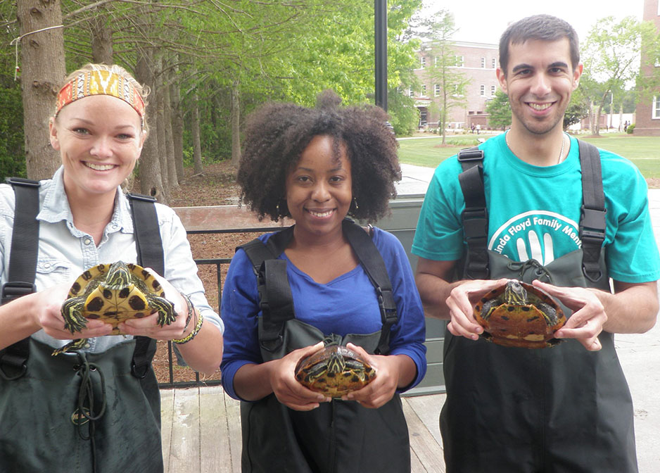 Elementary Education Students with Turtles image