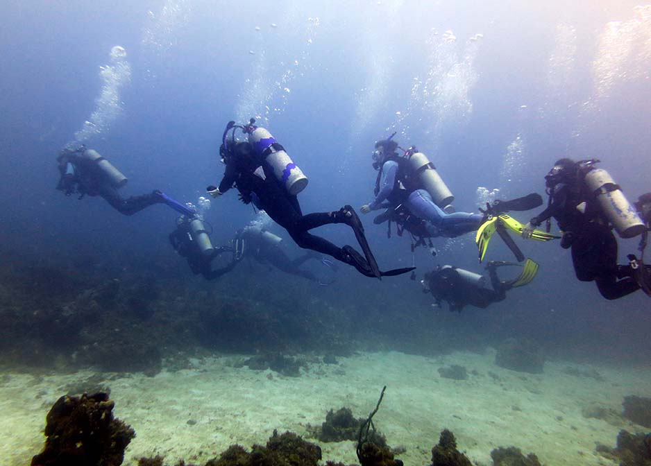 Diving in Jamaica image