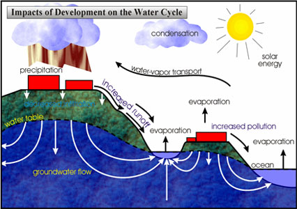 Impact on Water Cycle