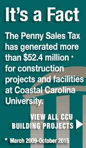 Penny Sales Tax Graphic